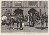 The Queen receiving at Windsor Castle the Five Arab Horses presented to Her Majesty by the Sultan of Muscat