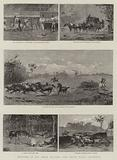 """Sketches in the """"Back Country,"""" New South Wales, Australia"""