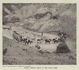 Desert Freight Train at the Borax Camp