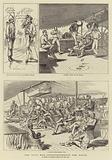 The Zulu War, Reinforcements for Natal