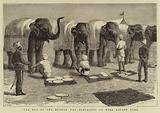 The End of the Afghan War, Elephants at Mess, Safaed Sung