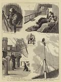 """The New Governor-General of Canada, Incidents during the Voyage of the """"Sarmatian"""""""