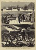 "The Crisis in Egypt, the Voyage of HMS Troopship ""Orontes"""