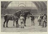 The Shire Horse Show at the Agricultural Hall, the Final Duel