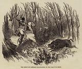 The Prince de Joinville Boar-Hunting in the Forest of Crecy