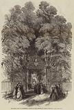 The Royal Visit to Cambridge, Sketch in the Gardens of Trinity College