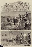 Wimbledon 1863
