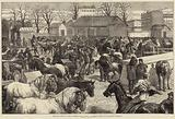 The Food Supply of Paris, Butchers' Horse Market, Boulevard d'Enfer and Boulevard Montrouge