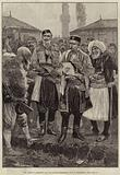 The Albanian Question, the Montenegrin Minister of War at Podgoritza