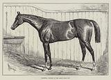 Verneuil, Winner of the Ascot Gold Cup