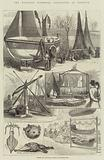 The National Fisheries Exhibition at Norwich