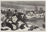 Seal-Hunting in the Arctic Regions