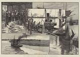 The Fish Supply, Sketches of a Fish-Market