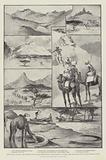 The Soudan Advance, the Journey of Five War-Correspondents from Berber to Suakim, over the Trade …