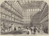 New Museum of the Royal College of Surgeons, Lincoln's-Inn Fields