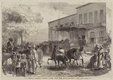 The Abyssinian Expedition, Transport Officers buying Mules opposite Shepheard's Hotel, Cairo