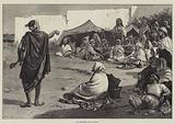 An Algerine Story-Teller