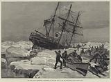 The Eira Arctic Expedition, foundering of the Eira, 21 August 1881, off Cape Flora, Franz Joseph Land