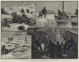 The Eira Arctic Expedition, Sketches in Franz Joseph Land