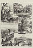 Sketches of Life in Queensland