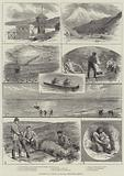 Sketches of a Cruise to Alaska, North-West America