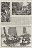 Colonial and Indian Exhibition, North Borneo, Straits Settlements, and Hong-Kong