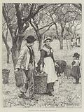 Agricultural Scenes, November, the Apple Harvest