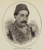 Abdul Hamid II, the New Sultan of Turkey