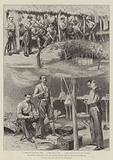 The Ashanti Expedition, with the Special Service Corps on the Way to Coomassie