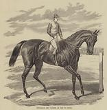 Petrarch, the Winner of the St Leger