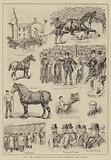 Sale of Mr Lawrence Drew's Draught Horses at Merryton, near Glasgow