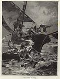 Coral fishermen