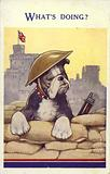 British bulldog soldier in a trench by Windsor Castle