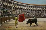 Bullfighting scene, Spain