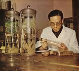 Chinese agricultural chemist from the Changchun Research Institute People's Republic of China, 1950s