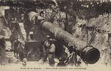 French heavy gun under camouflage, Somme front, France, World War I