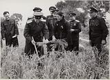 Soviet-Chinese Friendship: Red Army delegation visiting Chinese peasants during the harvest, early 1950s