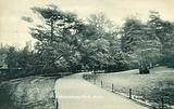 Woodlands Park, Acton