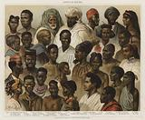 African Races