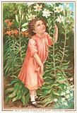 GIrl smelling lilies in the garden, Christmas Card