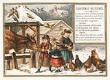 Feeding animals in the snow, Christmas Card