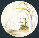 Toad sitting on rock in pond, Card