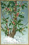 Holly Tree, Christmas Card