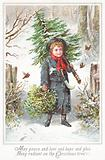Boy carrying Christmas Tree over shoulder, Christmas Card