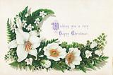 Wild Roses and Lily Of The Valley, Christmas Card