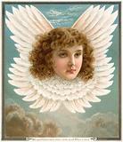 Angel's head in wings