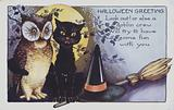 Halloween greetings card showing an owl, a cat and a witches hat at night.