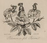 Victorian women's fashion: bloomers