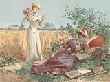 Ladies in a cornfield