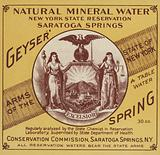 Natural Mineral Water, New York State Reservation, Saratoga Springs